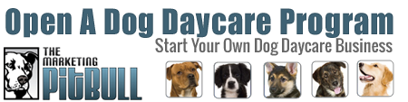 Open A Dog Daycare Program