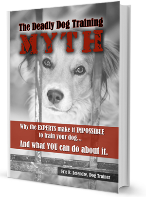 The Deadly Dog Training Myth